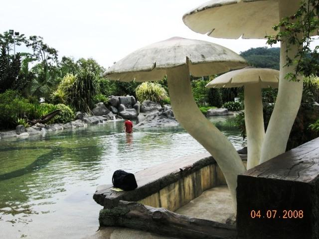 来到了温泉,水池比山水池小很多,越靠近热水源,水温越高。