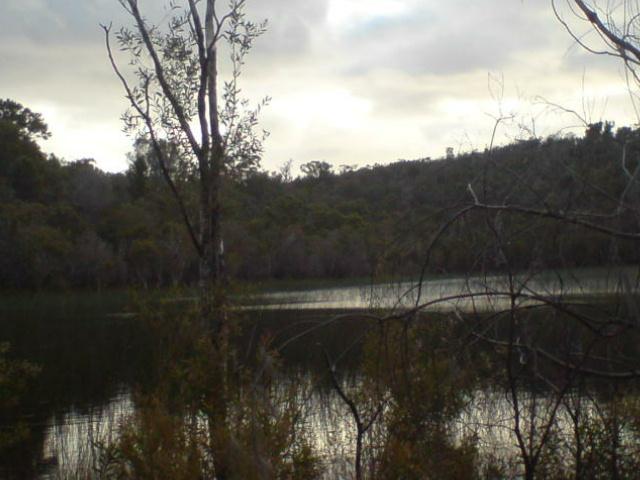 其中之一我不知名的淡水湖