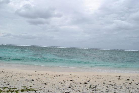 珊瑚围绕整座小岛。