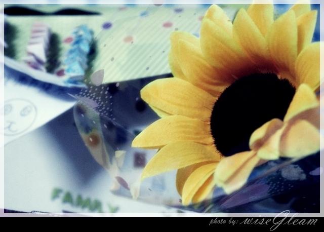 好大一朵向日葵~*