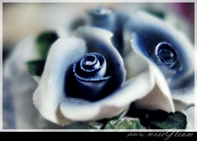 蓝玫瑰~*