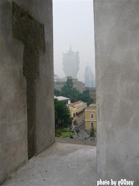 透过大山芭看到普京。